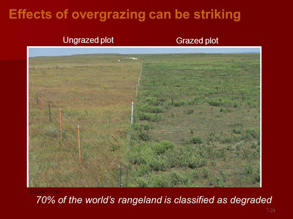Effects of overgrazing can be striking Ungrazed plot Grazed plot 70% of the worlds rangeland is classified as degraded FIGURE 7.19 7-24