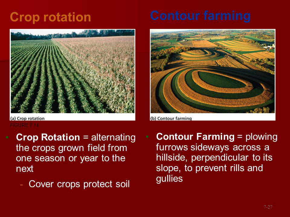 Crop rotation Crop Rotation = alternating the crops grown field from one season or year to the next - Cover crops protect soil Contour Farming = plowing furrows sideways across a hillside, perpendicular to its slope, to prevent rills and gullies Contour farming FIGURE 7.14 7-27
