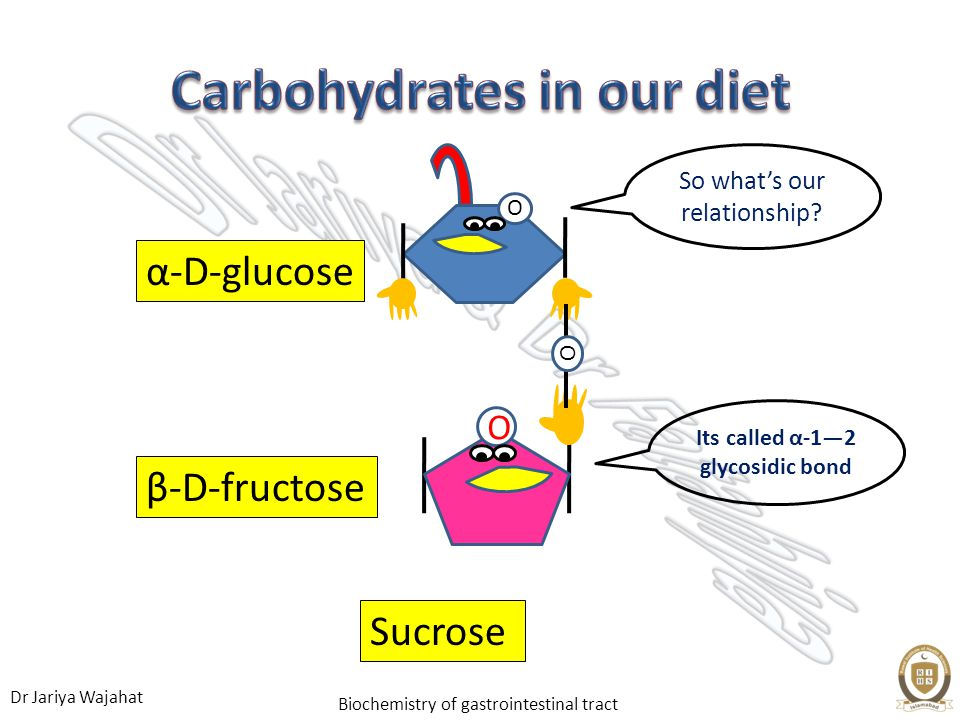 Dr Jariya Wajahat Biochemistry of gastrointestinal tract O O O β-D-fructose α-D-glucose Sucrose So whats our relationship? Its called α-12 glycosidic