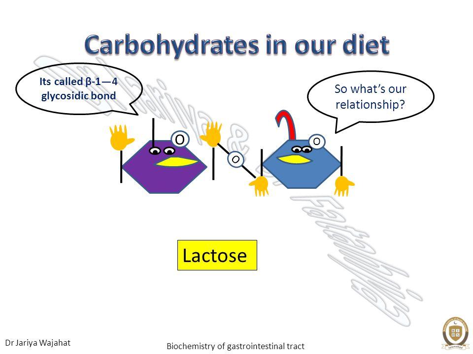 Dr Jariya Wajahat Biochemistry of gastrointestinal tract Lactose O O O So whats our relationship? Its called β-14 glycosidic bond
