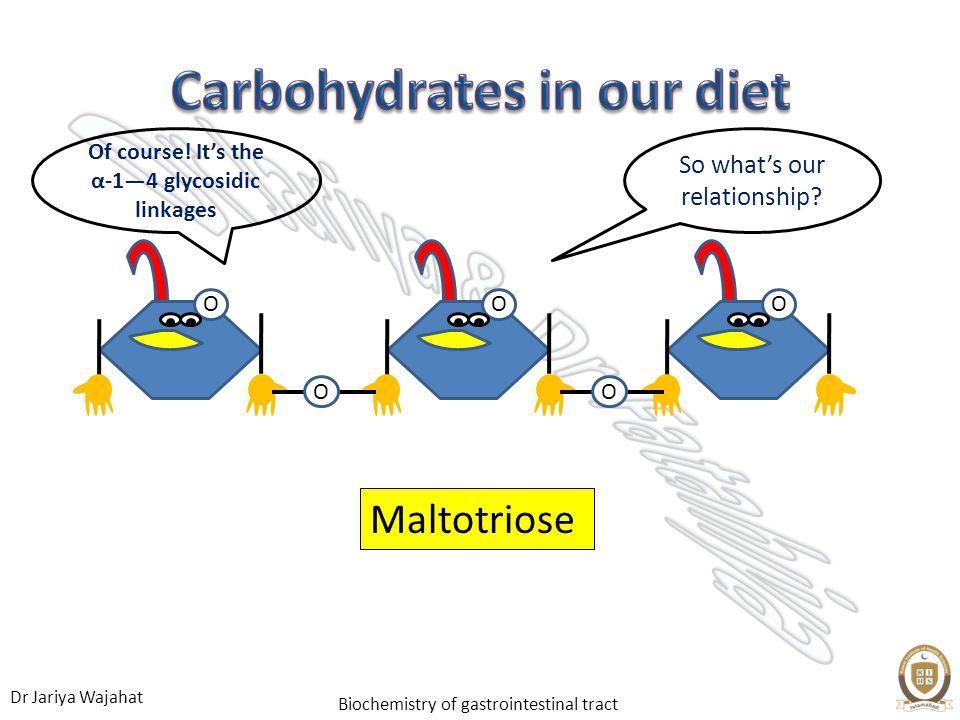 Dr Jariya Wajahat Biochemistry of gastrointestinal tract Maltotriose OO O O O So whats our relationship.
