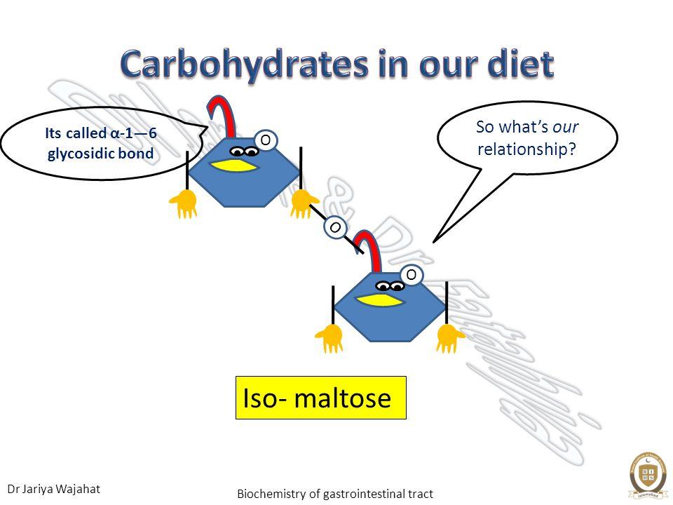 Dr Jariya Wajahat Biochemistry of gastrointestinal tract Iso- maltose OO O So whats our relationship? Its called α-16 glycosidic bond