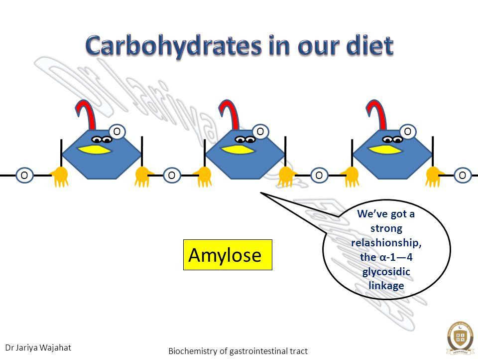 Dr Jariya Wajahat Biochemistry of gastrointestinal tract OO O O OOO Amylose Weve got a strong relashionship, the α-14 glycosidic linkage