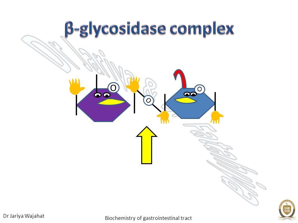 Dr Jariya Wajahat Biochemistry of gastrointestinal tract O O O