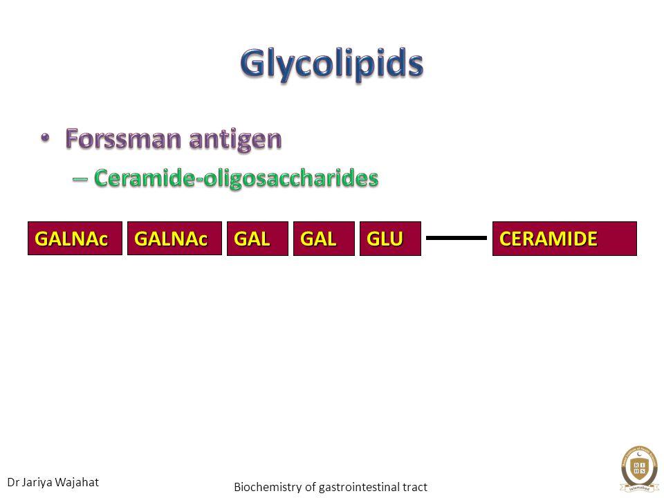 Dr Jariya Wajahat Biochemistry of gastrointestinal tract GALCERAMIDEGLUGALGALNAcGALNAc