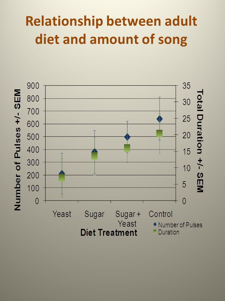 Relationship between adult diet and amount of song