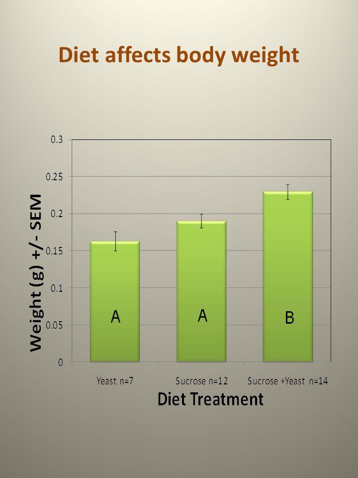 Diet affects body weight