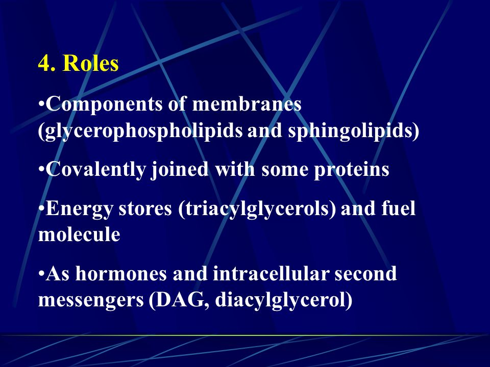 10. Ketone bodies are converted back to acetyl- CoA in extrahepatic tissues