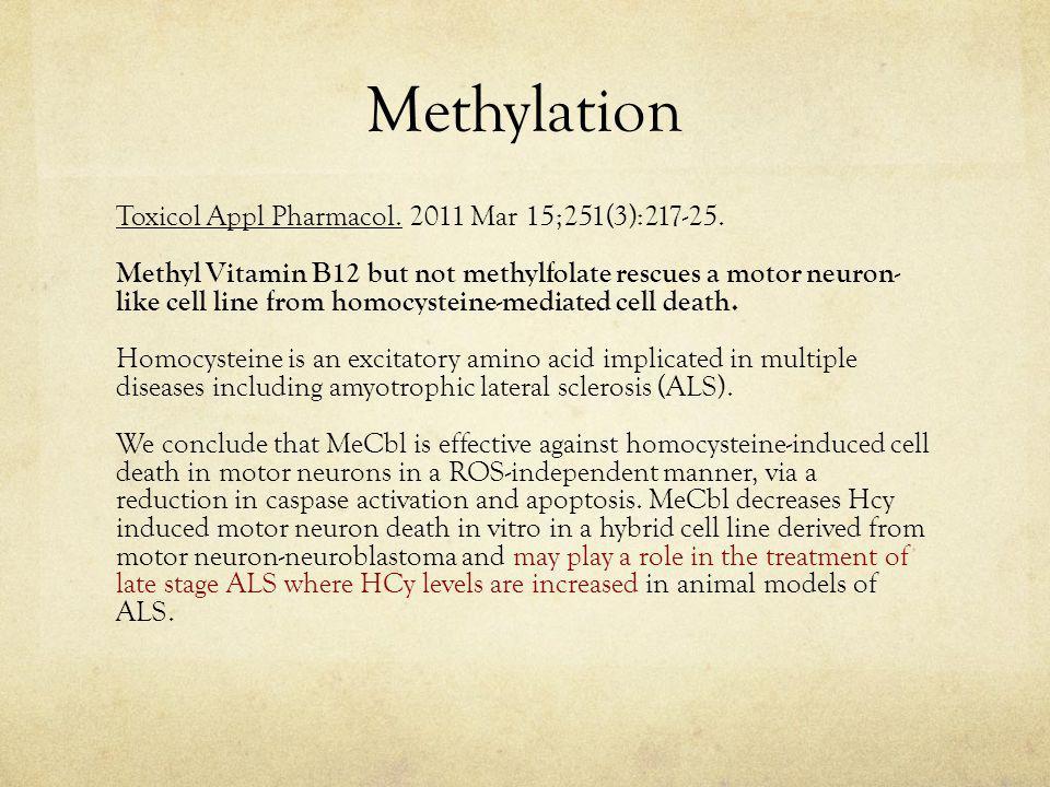 Methylation Toxicol Appl Pharmacol.2011 Mar 15;251(3):217-25.