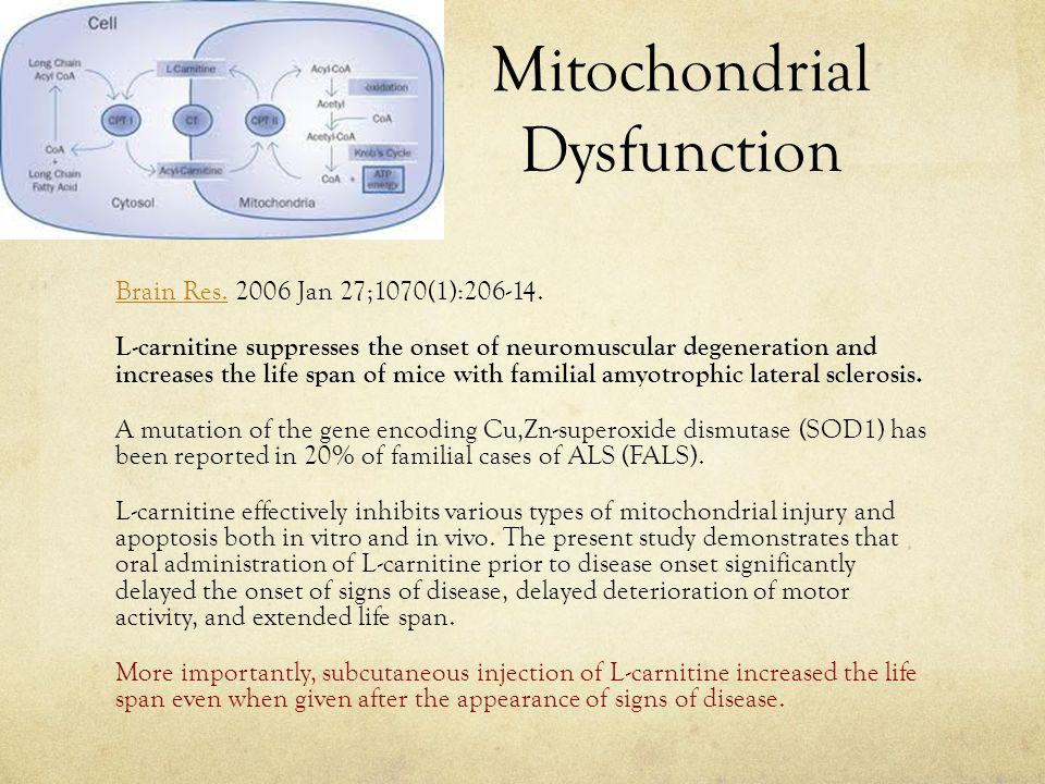 Mitochondrial Dysfunction Brain Res.Brain Res.2006 Jan 27;1070(1):206-14.