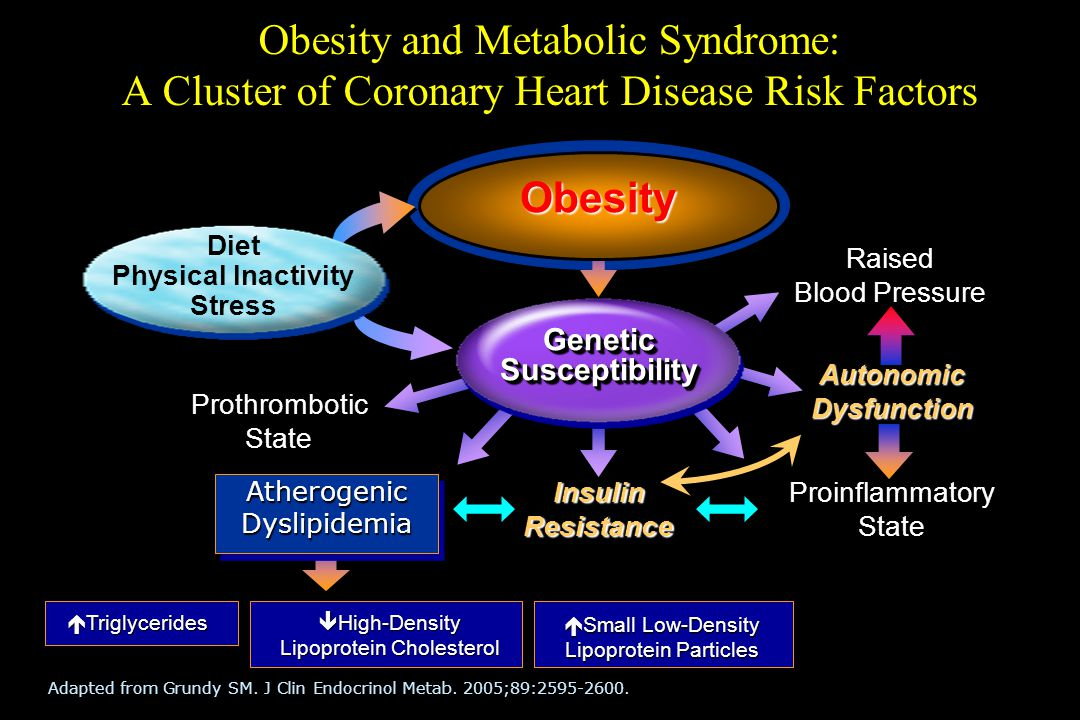 Obesity and Metabolic Syndrome: A Cluster of Coronary Heart Disease Risk Factors Adapted from Grundy SM. J Clin Endocrinol Metab. 2005;89:2595-2600. R