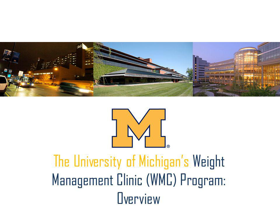 The University of Michigans Weight Management Clinic (WMC) Program: Overview
