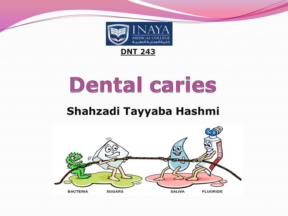 Shahzadi Tayyaba Hashmi DNT 243