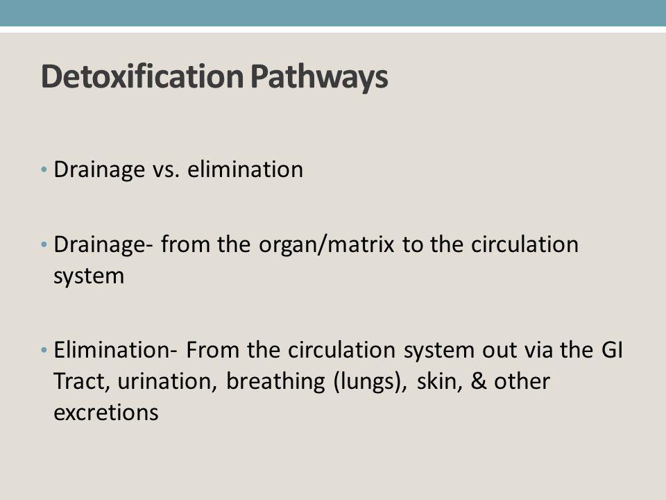 Detoxification Pathways Drainage vs. elimination Drainage- from the organ/matrix to the circulation system Elimination- From the circulation system ou