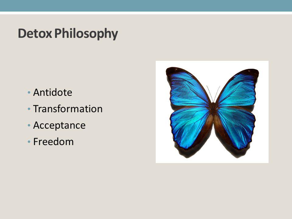Detox Philosophy Antidote Transformation Acceptance Freedom