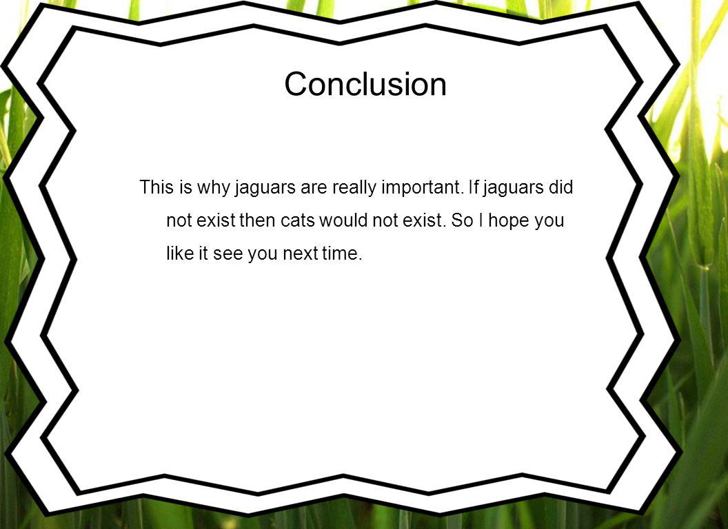 Conclusion This is why jaguars are really important.
