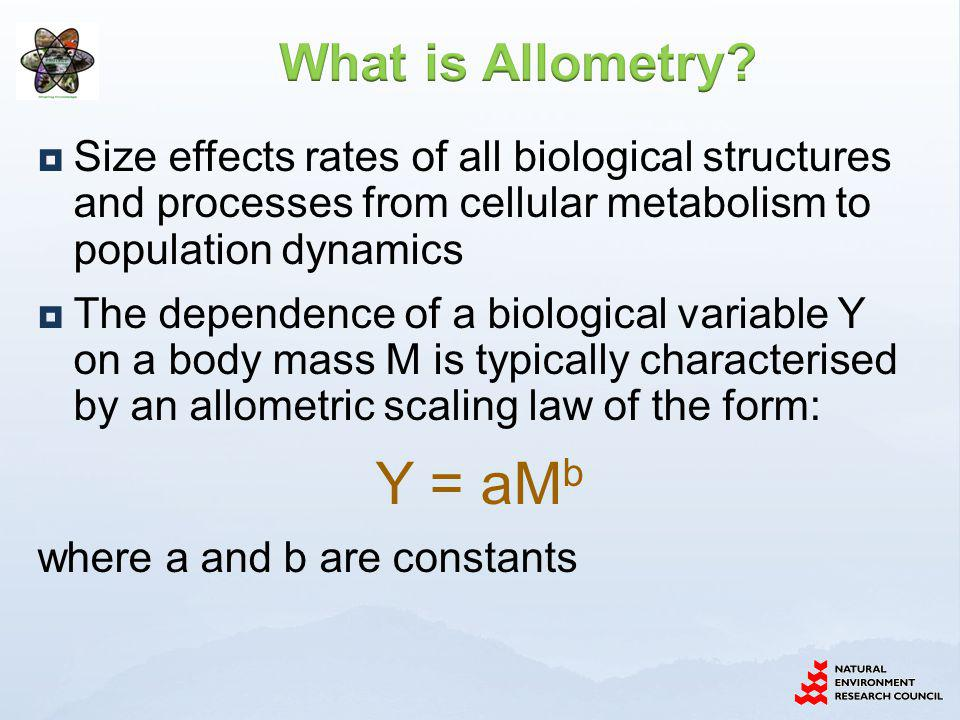 Size effects rates of all biological structures and processes from cellular metabolism to population dynamics The dependence of a biological variable Y on a body mass M is typically characterised by an allometric scaling law of the form: Y = aM b where a and b are constants