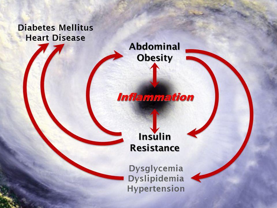 © 2008 © 2010 Insulin Resistance AbdominalObesity Dysglycemia Dyslipidemia Hypertension Diabetes Mellitus Heart Disease InflammationInflammation