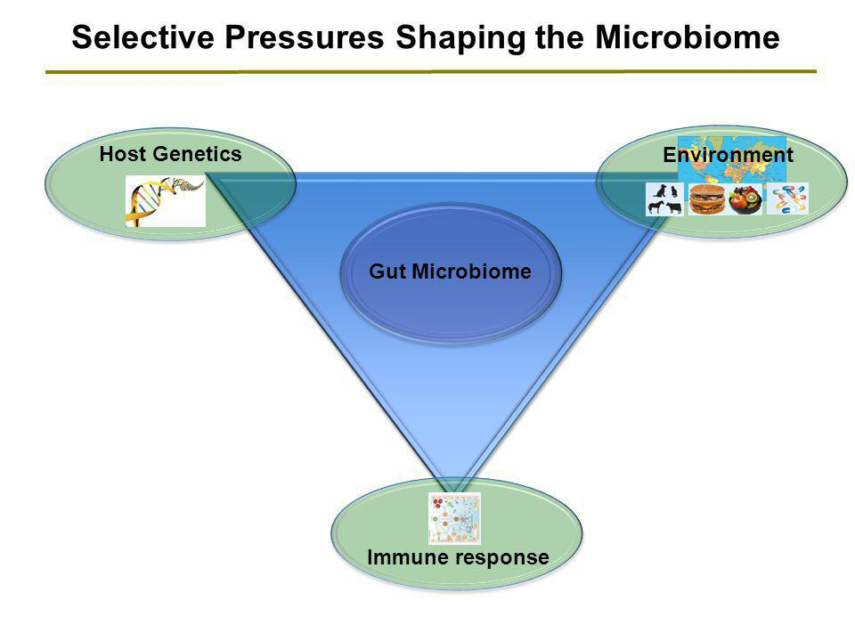 Selective Pressures Shaping the Microbiome Host Genetics Gut Microbiome Immune response Environment