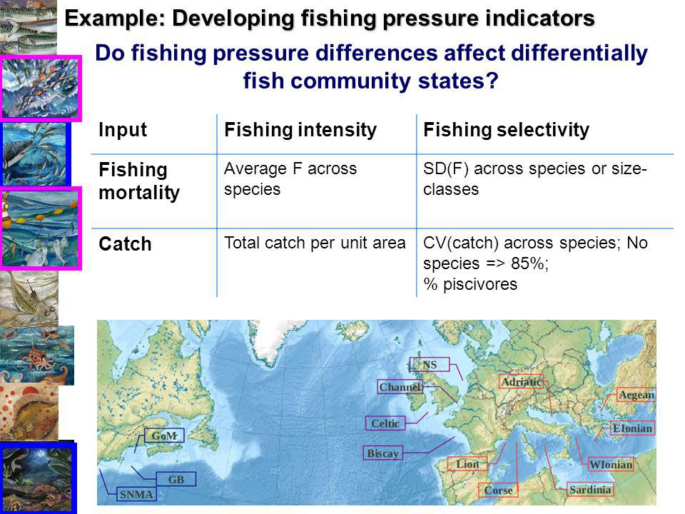 Do fishing pressure differences affect differentially fish community states.