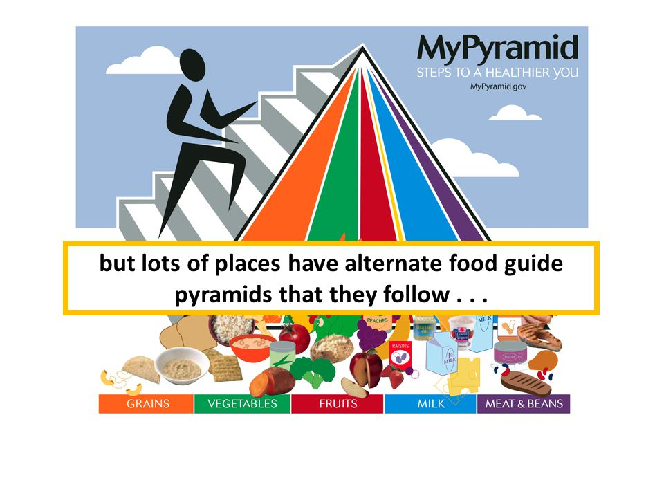 The current USDA food pyramid but lots of places have alternate food guide pyramids that they follow...