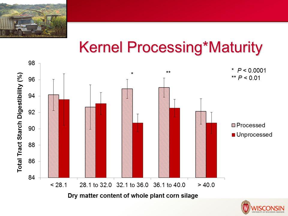 Kernel Processing*TLOC