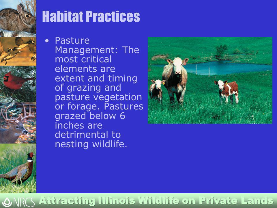 Habitat Practices Pasture Management: The most critical elements are extent and timing of grazing and pasture vegetation or forage.