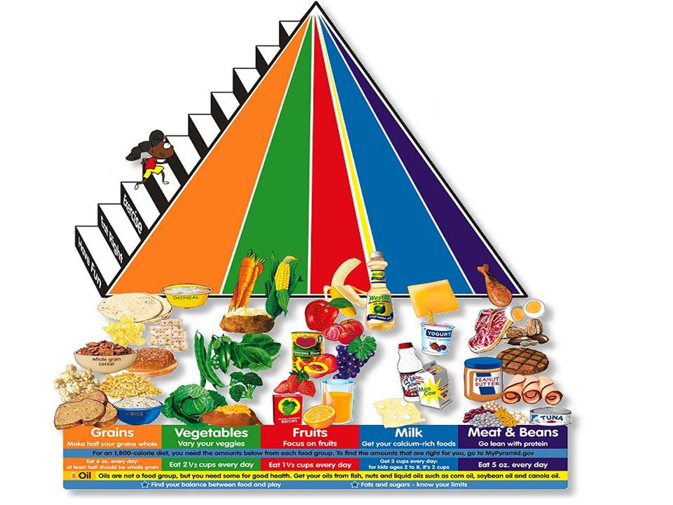 The Food Groups A good diet includes food from each of the food groups: –Bread/Pasta/Cereal/Rice group –Fruit group –Vegetable group –Meat/Protein gro
