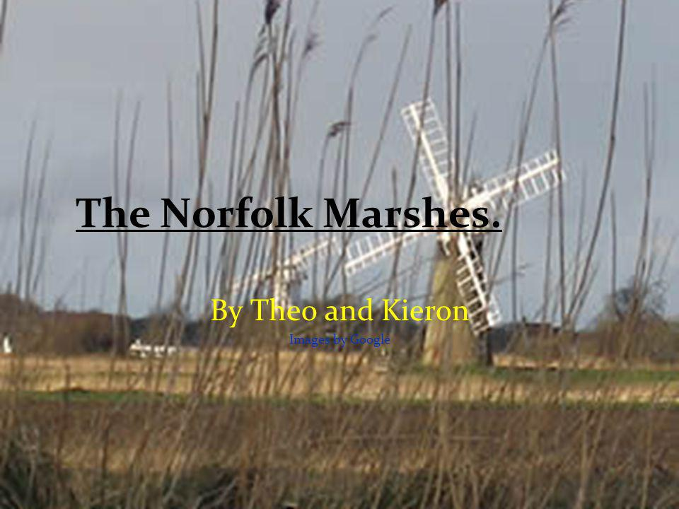 The Norfolk Marshes. By Theo and Kieron Images by Google