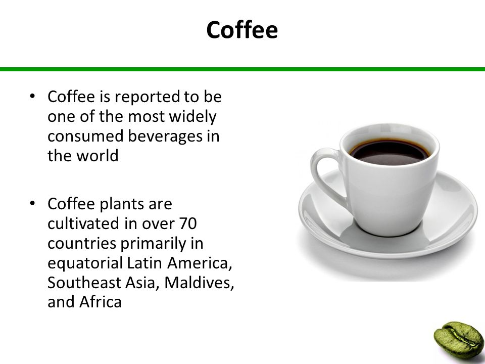 Coffee Coffee is reported to be one of the most widely consumed beverages in the world Coffee plants are cultivated in over 70 countries primarily in equatorial Latin America, Southeast Asia, Maldives, and Africa