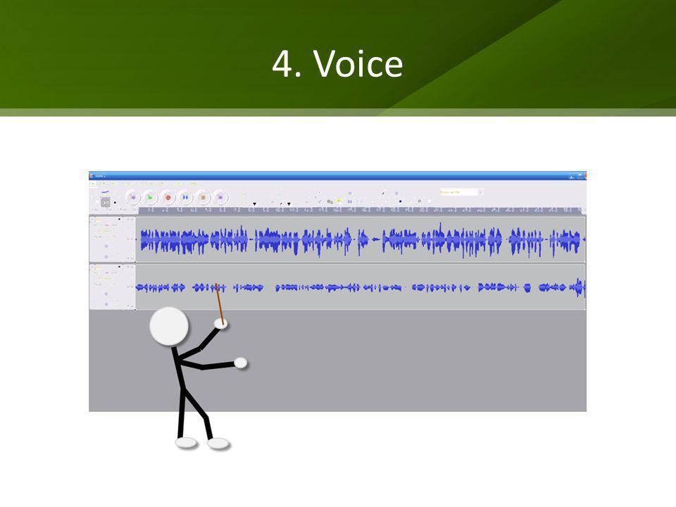 4. Voice