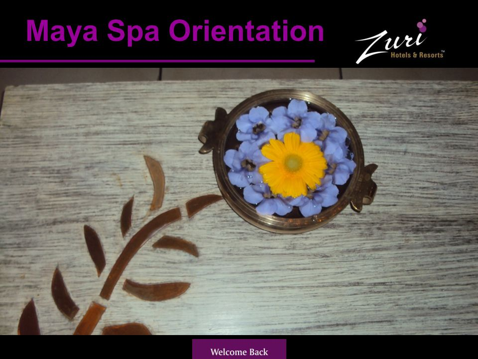 Spa Reception Spa Reception is open from Morning 8am to night 8pm