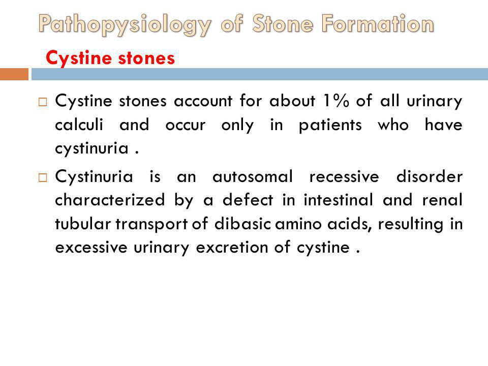 Cystine stones account for about 1% of all urinary calculi and occur only in patients who have cystinuria. Cystinuria is an autosomal recessive disord