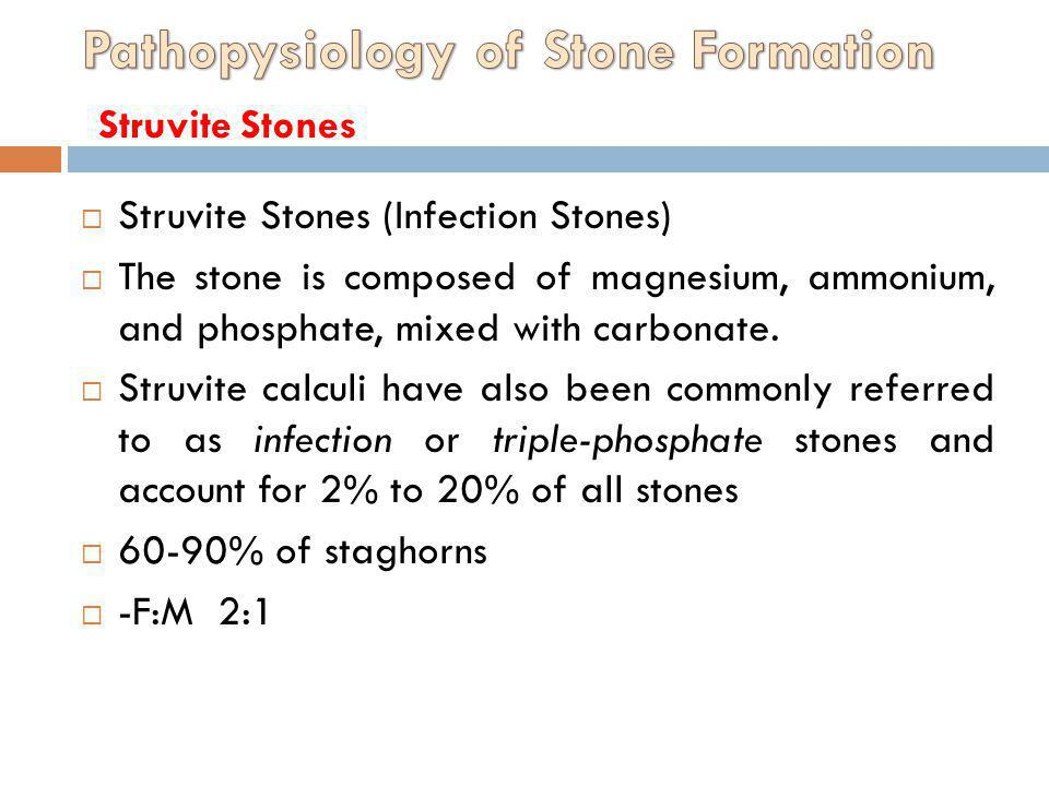 Struvite Stones (Infection Stones) The stone is composed of magnesium, ammonium, and phosphate, mixed with carbonate. Struvite calculi have also been