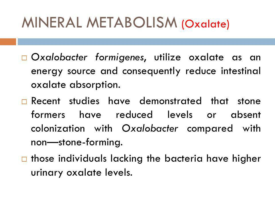 MINERAL METABOLISM (Oxalate) Oxalobacter formigenes, utilize oxalate as an energy source and consequently reduce intestinal oxalate absorption. Recent