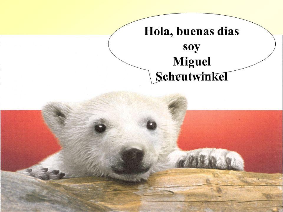 2 Hola, buenas dias soy Miguel Scheutwinkel