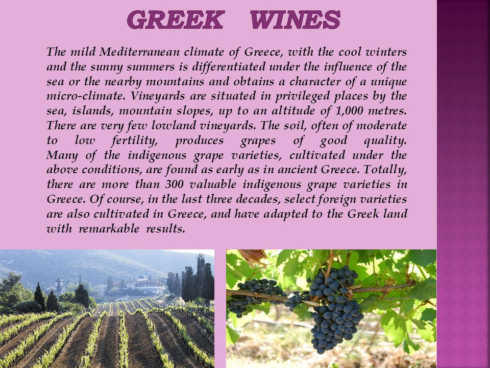 The mild Mediterranean climate of Greece, with the cool winters and the sunny summers is differentiated under the influence of the sea or the nearby mountains and obtains a character of a unique micro-climate.