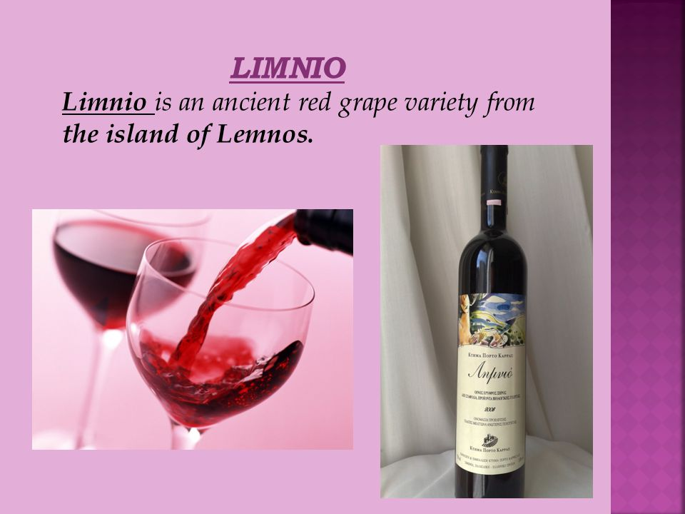 LIMNIO Limnio is an ancient red grape variety from the island of Lemnos.