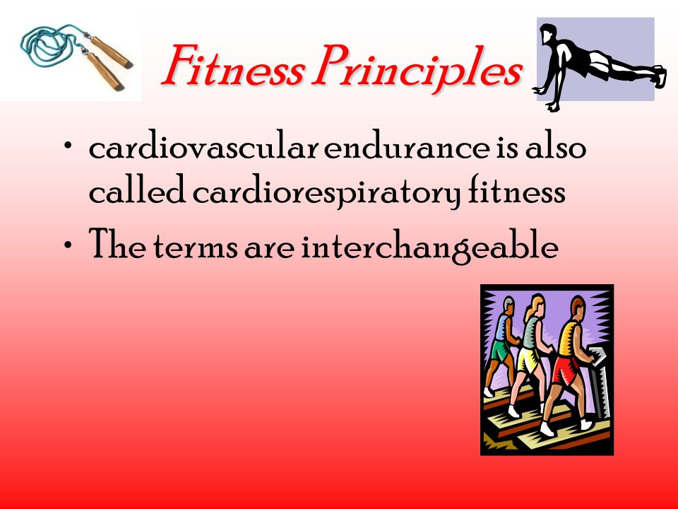 Fitness Principles cardiovascular endurance is also called cardiorespiratory fitness The terms are interchangeable