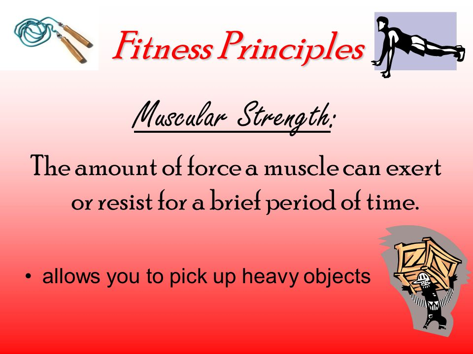 Fitness Principles Muscular Strength: The amount of force a muscle can exert or resist for a brief period of time. allows you to pick up heavy objects