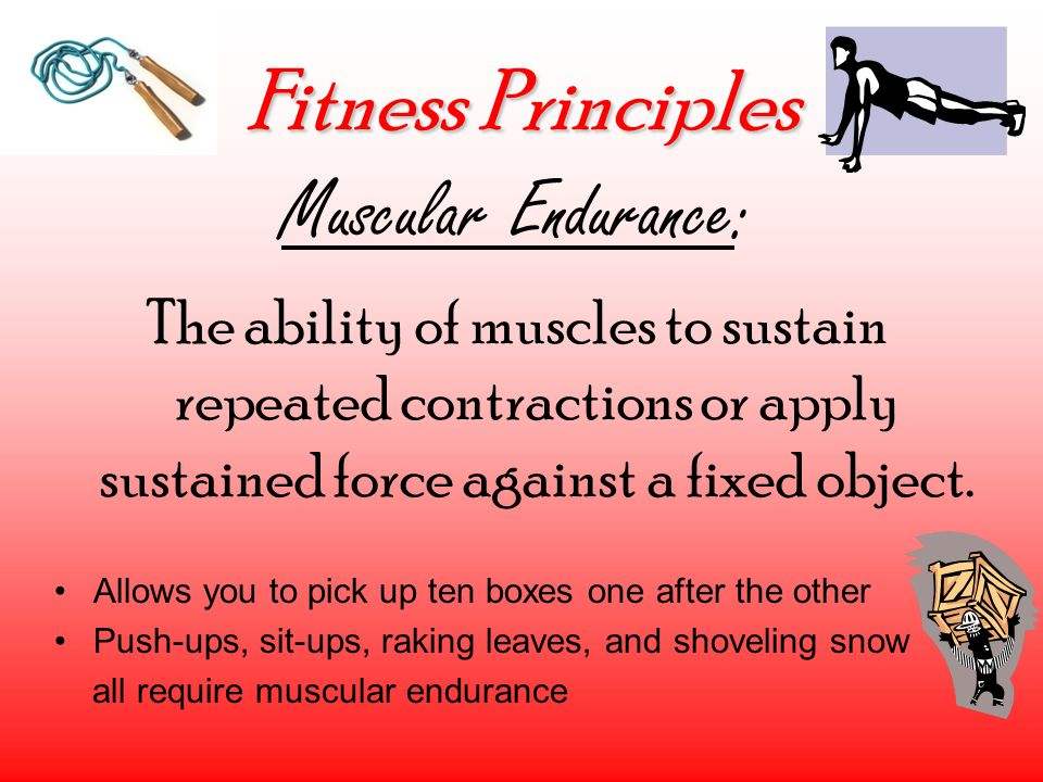 Fitness Principles Muscular Endurance: The ability of muscles to sustain repeated contractions or apply sustained force against a fixed object. Allows