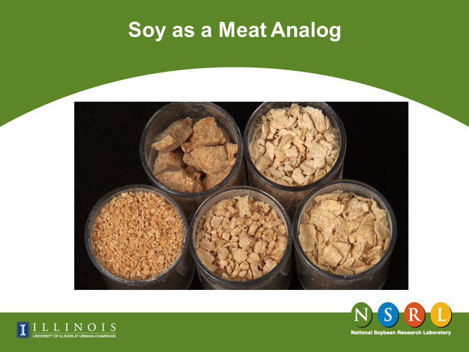 Soy as a Meat Analog