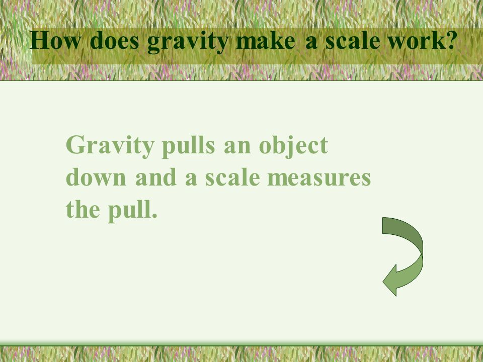 How does gravity make a scale work? Gravity pulls an object down and a scale measures the pull.