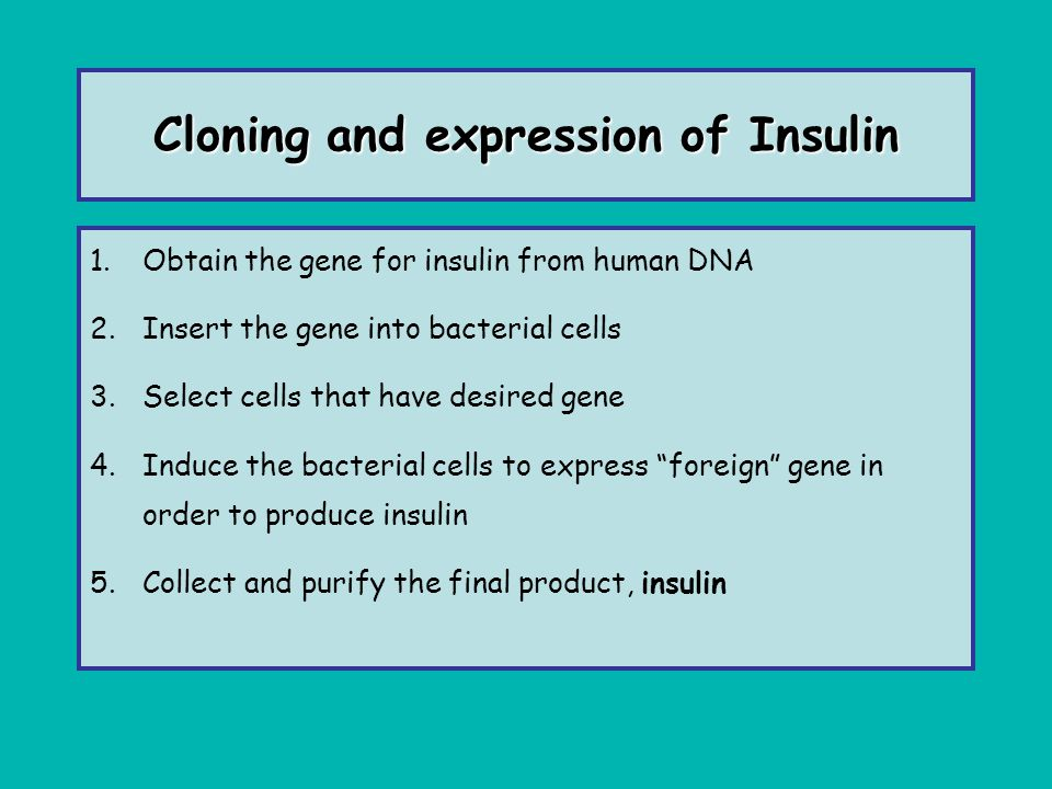 Cloning and expression of Insulin 1.Obtain the gene for insulin from human DNA 2.Insert the gene into bacterial cells 3.Select cells that have desired
