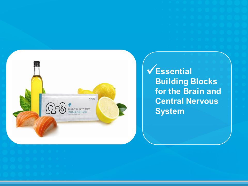 Essential Building Blocks for the Brain and Central Nervous System