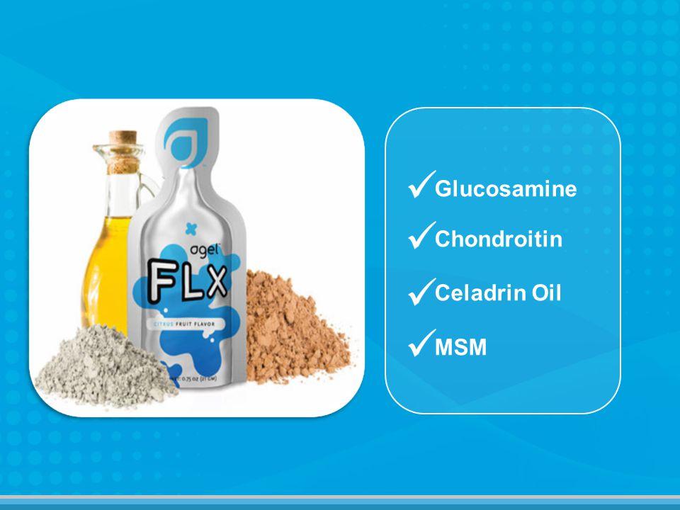 Glucosamine Chondroitin Celadrin Oil MSM