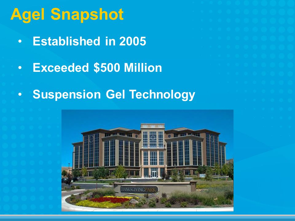 Agel Snapshot Established in 2005 Exceeded $500 Million Suspension Gel Technology