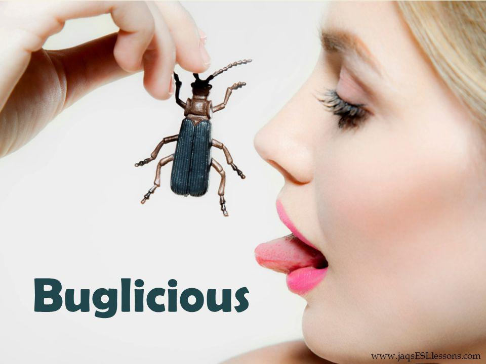 Buglicious www.jaqsESLlessons.com