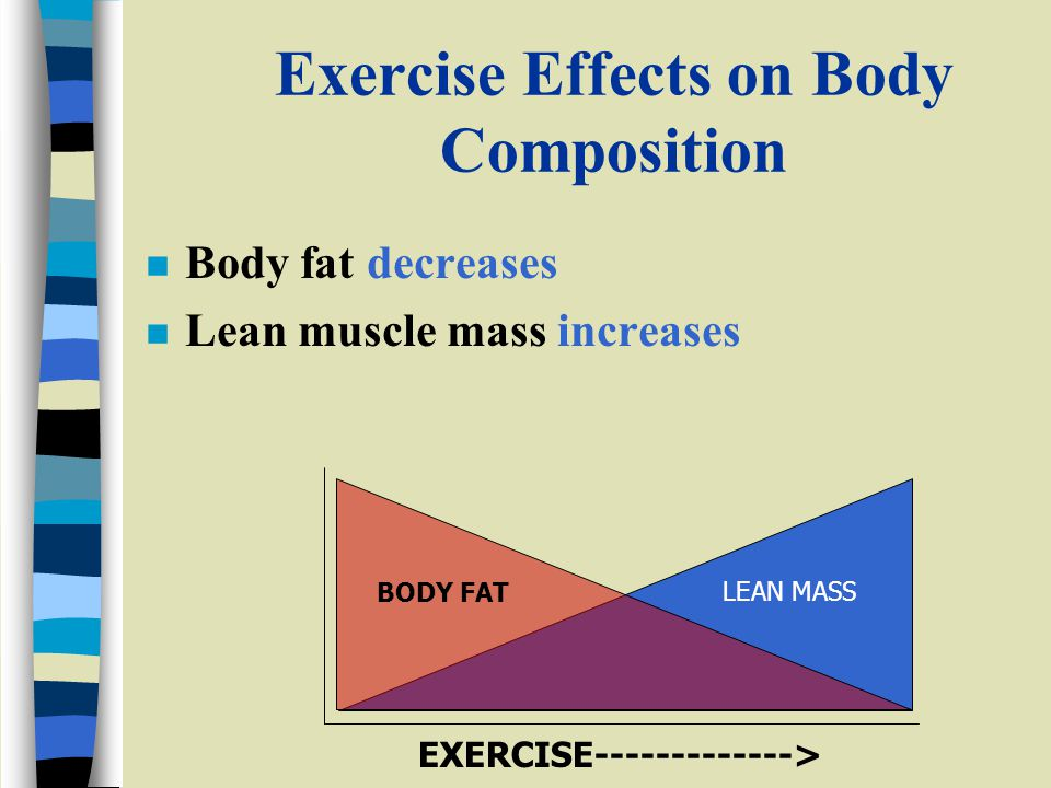 Exercise Effects on Body Composition n Body fat decreases n Lean muscle mass increases BODY FAT LEAN MASS EXERCISE------------->