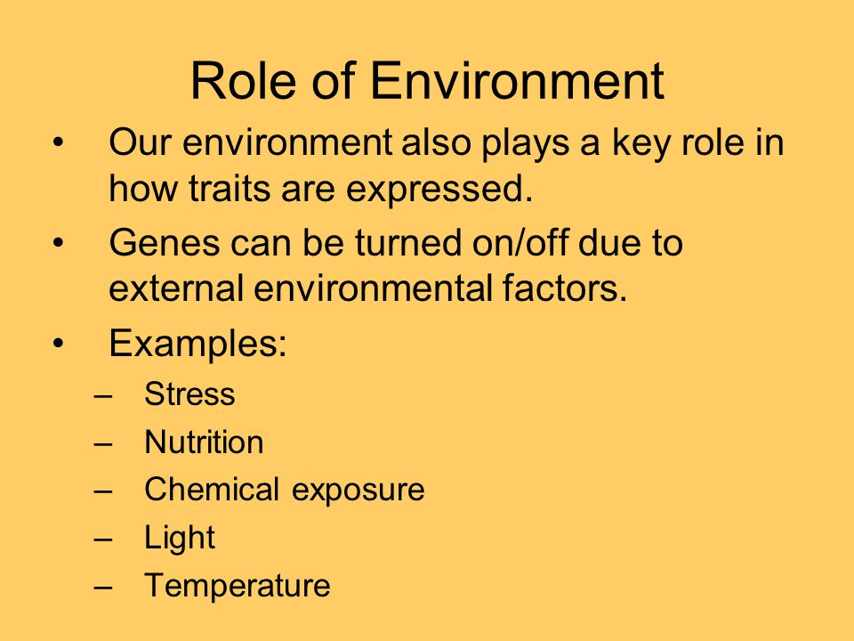 Role of Environment Our environment also plays a key role in how traits are expressed. Genes can be turned on/off due to external environmental factor